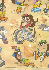 Cartolina Dupla face Decorada 50x65 Looney Biking Muresco